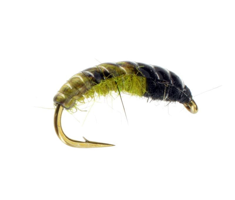 Caddis Nymphs: Czech Nymph with Hot Spot