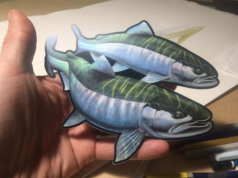 Nick Laferriere Steelhead Decals