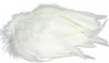 H&H Saddle Hackle - 1/4 Ounce Package