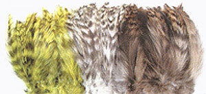 Barred Strung Neck Hackle