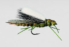 Stoneflies: Goodman's Crowd Surfer Stones