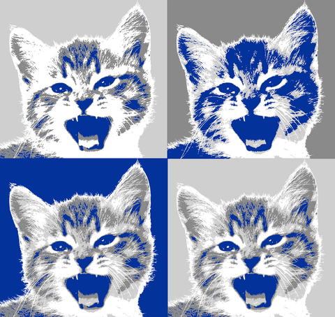 Pop Art by Cleo Kitty
