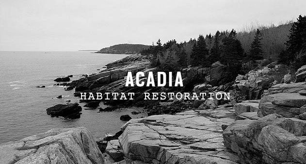 Acadia National Park | Parks Project