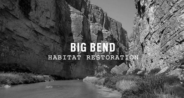 Big Bend National Park | Parks Project