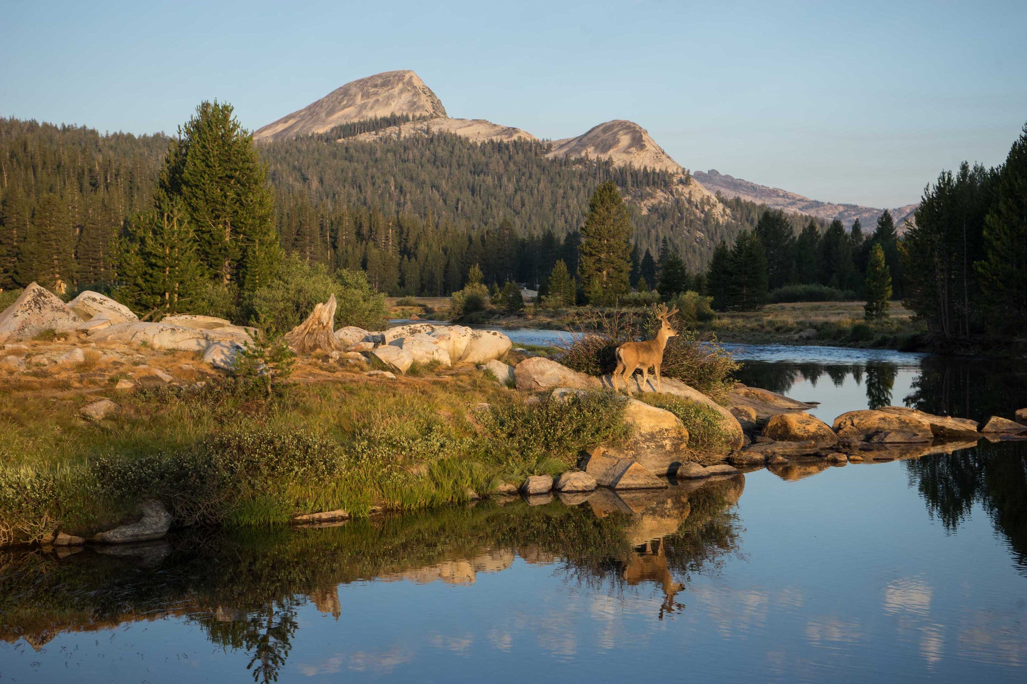 Christina Warburg_Parks-Project_Yosemite