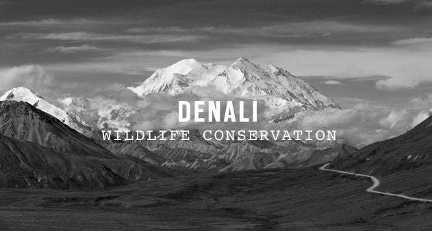 Denali National Park | Parks Project