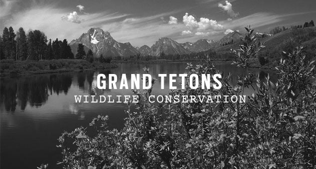 Grand Teton National Park | Parks Project
