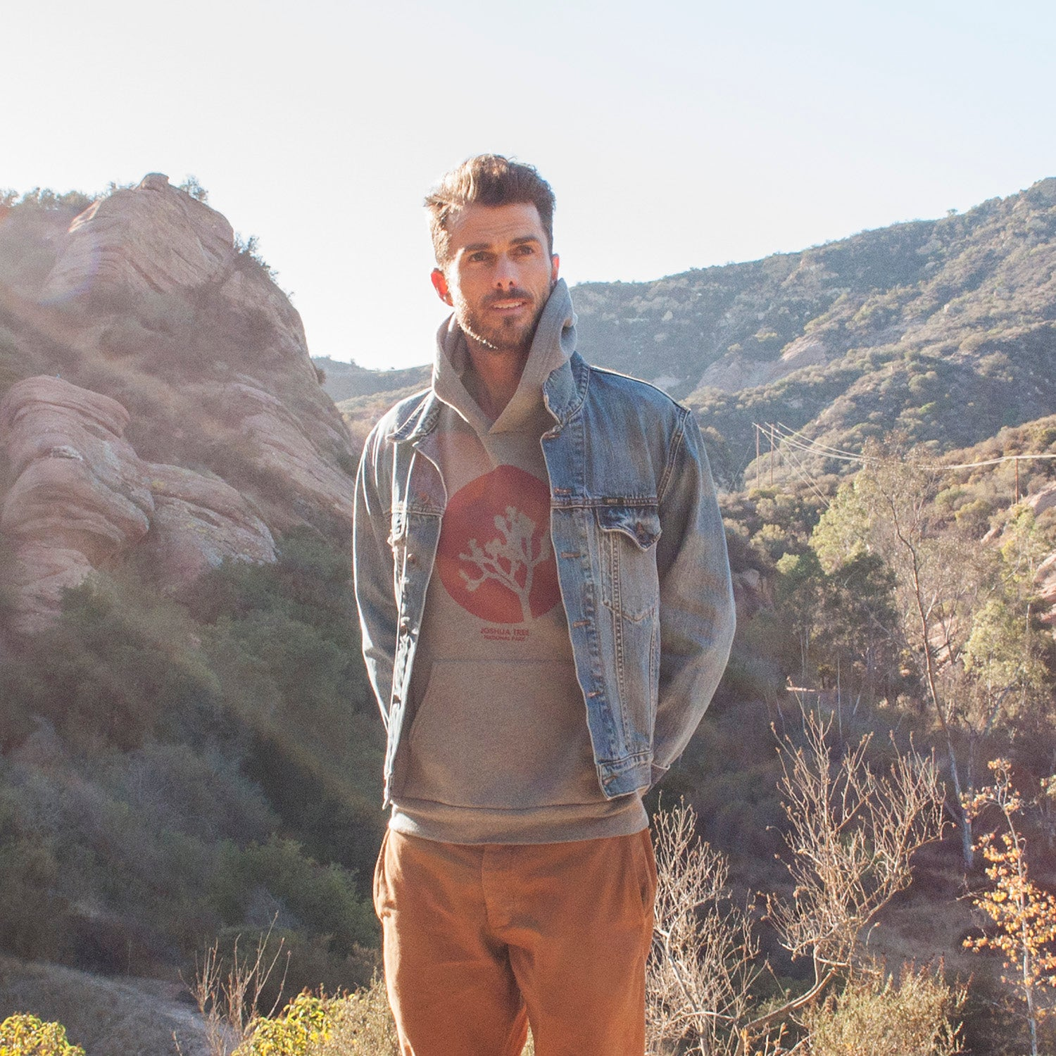 Joshua Tree Hoodie | Parks Project | National Parks Holiday Gift Guide