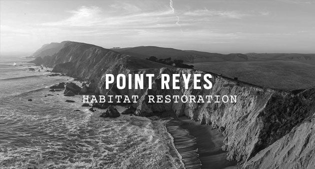 Point Reyes National Seashore </div>         <div class=