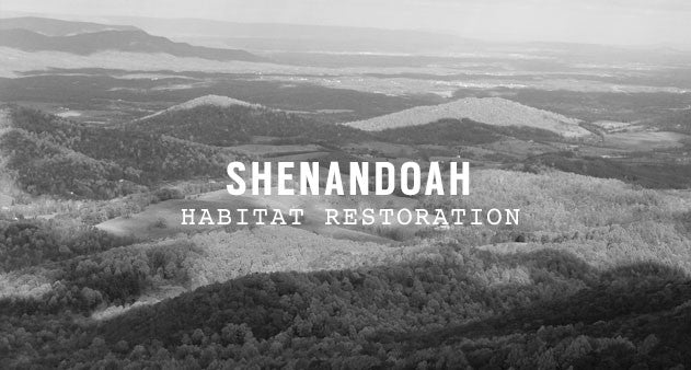 Shenandoah National Park </div>         <div class=