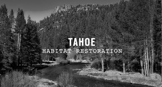 Tahoe National Forest | Parks Project