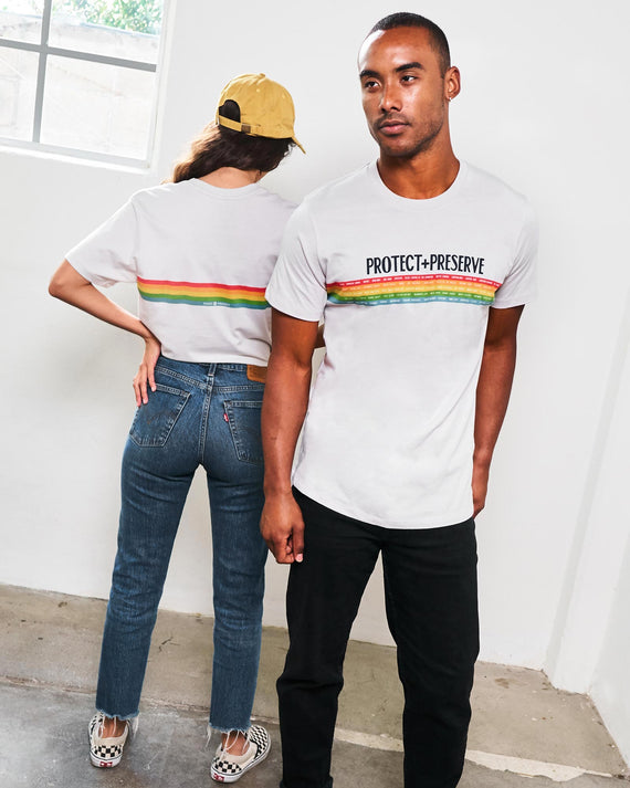 Protect + Preserve All Parks Rainbow Tee | Parks Project | National Parks Shirts