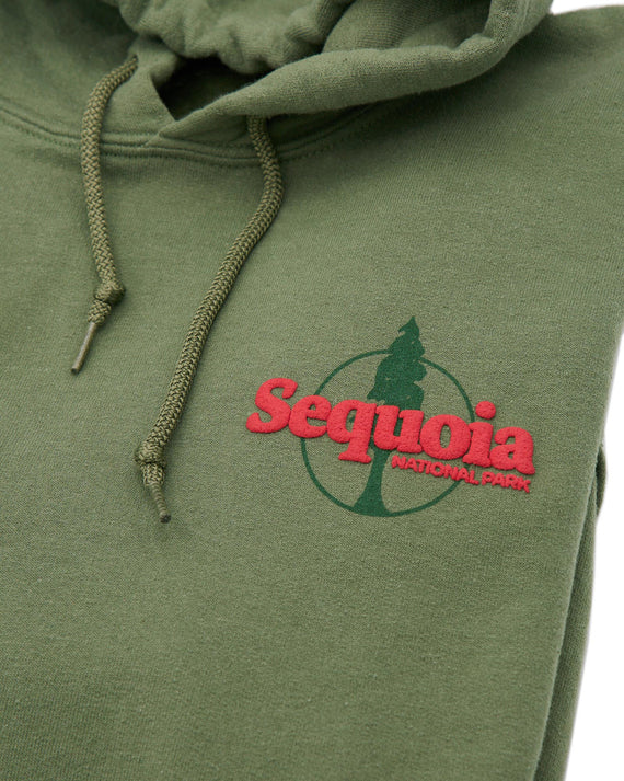 Sequoia Authentic Hoodie | Parks Project | National Parks Apparel