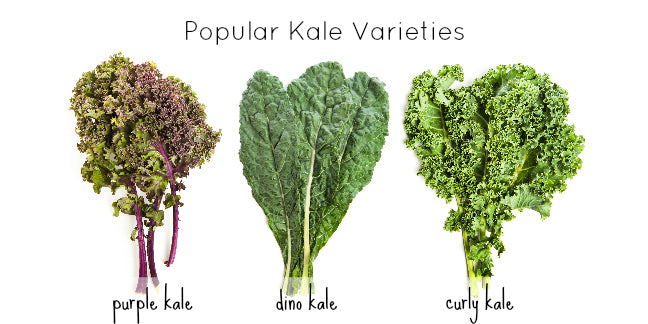 What does kale do for you