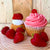 Strawberry Shortcake Martini Cupcake