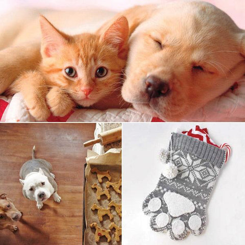 Searching for Gifts for PETS, here you can Shop Now and Buy Gifts for yourself or someone else! You'll find gifts for your canine or feline friends and the humans who heart them. View our Woof-Woof or Meow gift picks.