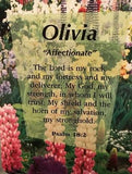 Girl Daydream Scripture Name Cards that begin with O (Olivia - Opal)