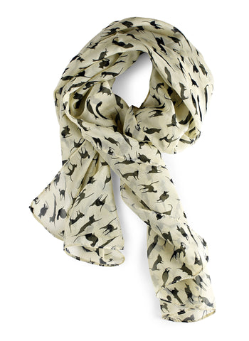 Black Cat Chiffon Scarf