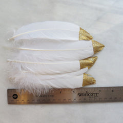gold glitter tipped dipped long white feathers