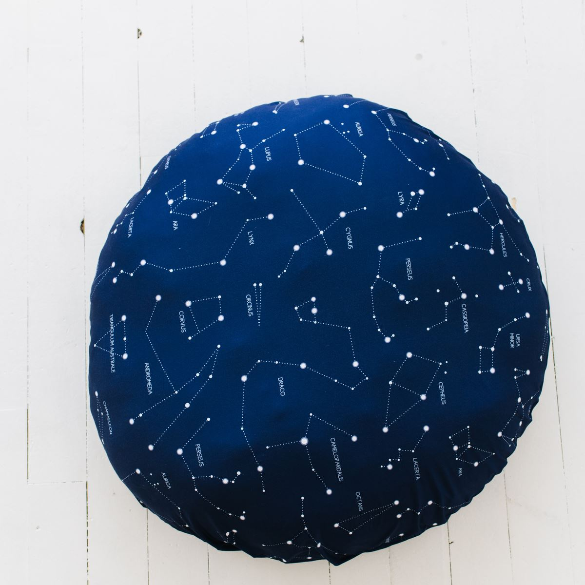 Ryan's Captivating Constellation | Floor Pillow