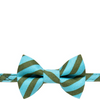 The Editor Bow Tie Collar (Cat) - Sarah Virginia Home