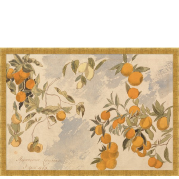 Citrus Spray - Sarah Virginia Home