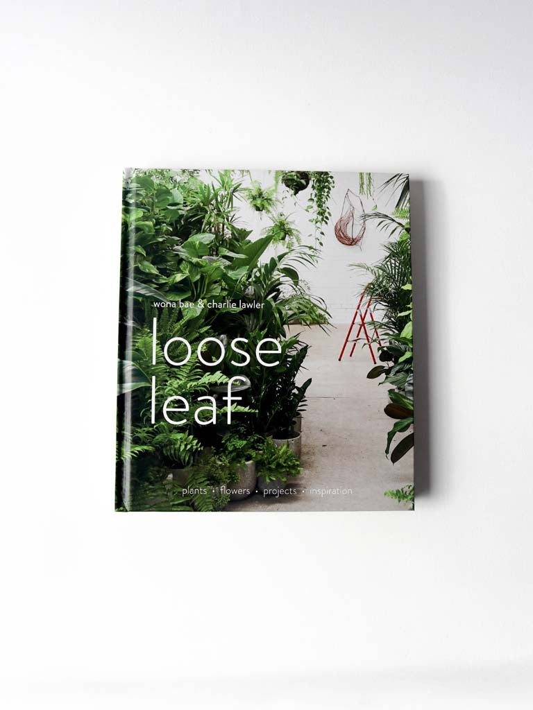 Loose Leaf by Wona Bae