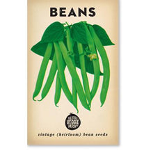 Load image into Gallery viewer, BEAN 'WINDSOR LONG POD' HEIRLOOM SEEDS