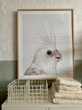 Load image into Gallery viewer, Cockatiel Print