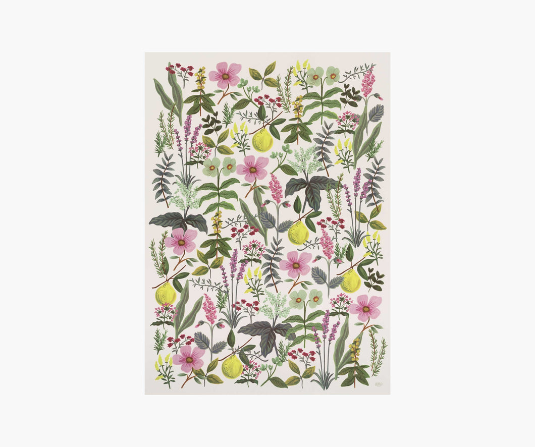 Wrapping Paper | Herb Garden
