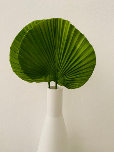 Fan Palm Leaf Decor Large