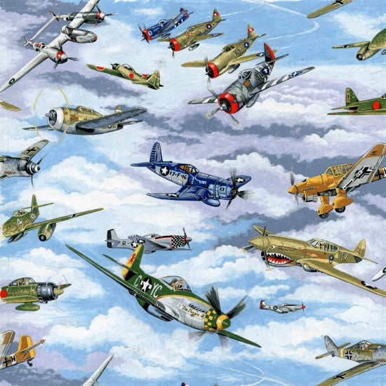 Warbirds - planes in sky