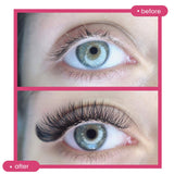 Y-Tips Super Matte Flat Lash Extensions 16 Rows - Misslamode