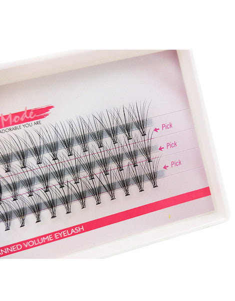 Missamode 0.07mm 10 Hairs Rapid Cluser Eyelash - Misslamode