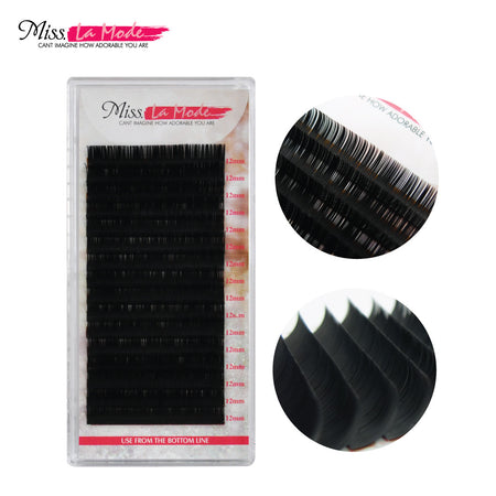Misslamode 0.25mm Extensions Eyelash D Curl