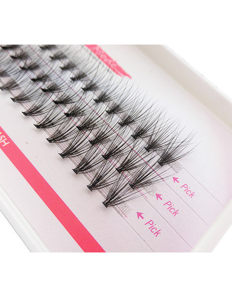 mink rapid cluster lashes