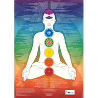 Chakra Poster - Soul Array - South Africa