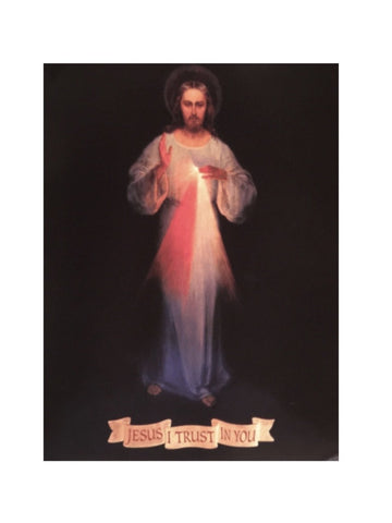 Divine Mercy Booklet