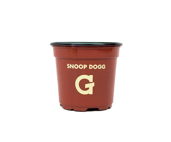 Snoop Dogg G Pro Bush Edition , Dry Herb - Grenco Science, WeedShop  - 2