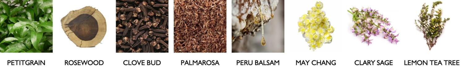 About our scents
