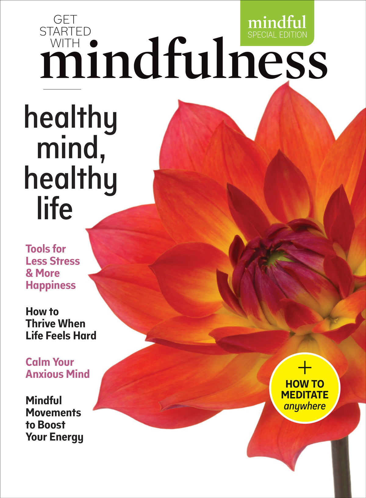 Mindful Or Mind Full Can You And Your >> Vol 4 Healthy Mind Healthy Life Mindful Store