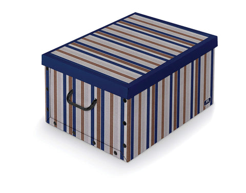 DomoPak Box with handles Blue Stripe