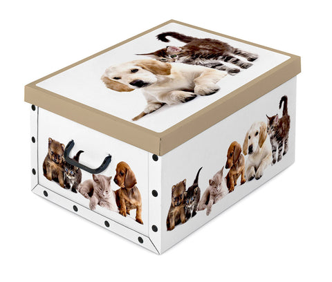 DomoPak Box with handles Mix A Dogs