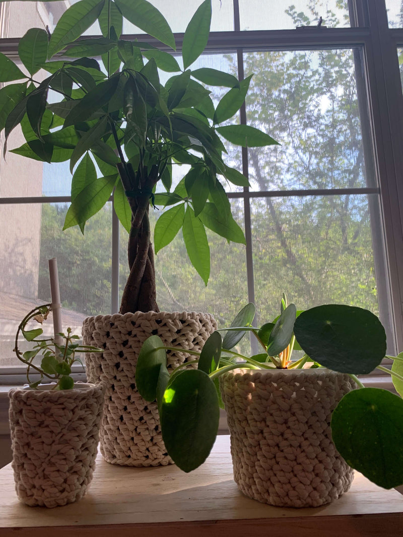 Crochet Plant Pot Covers