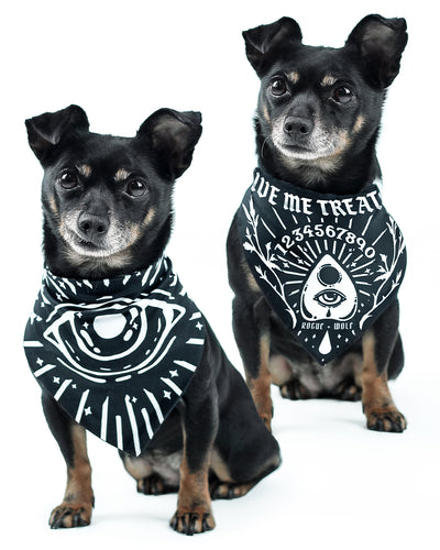 Give Me Treato's Ouija Pet Bandana - Dog or Cat