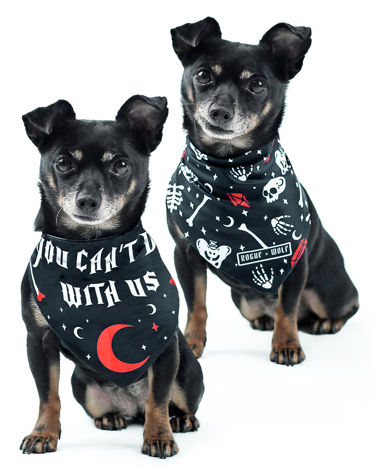 You Can't Dig With Us Pet Bandana - Dog or Cat