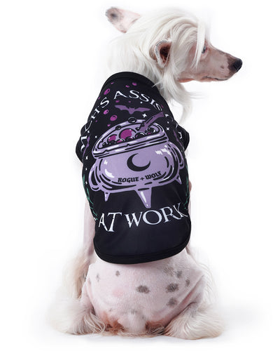Witch's Assistant at Work Pet Vest - Dog or Cat
