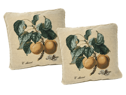 DaDa Bedding Set of Two Apricot Elegant Throw Pillow Covers w/ Inserts - 2-PCS - 18""