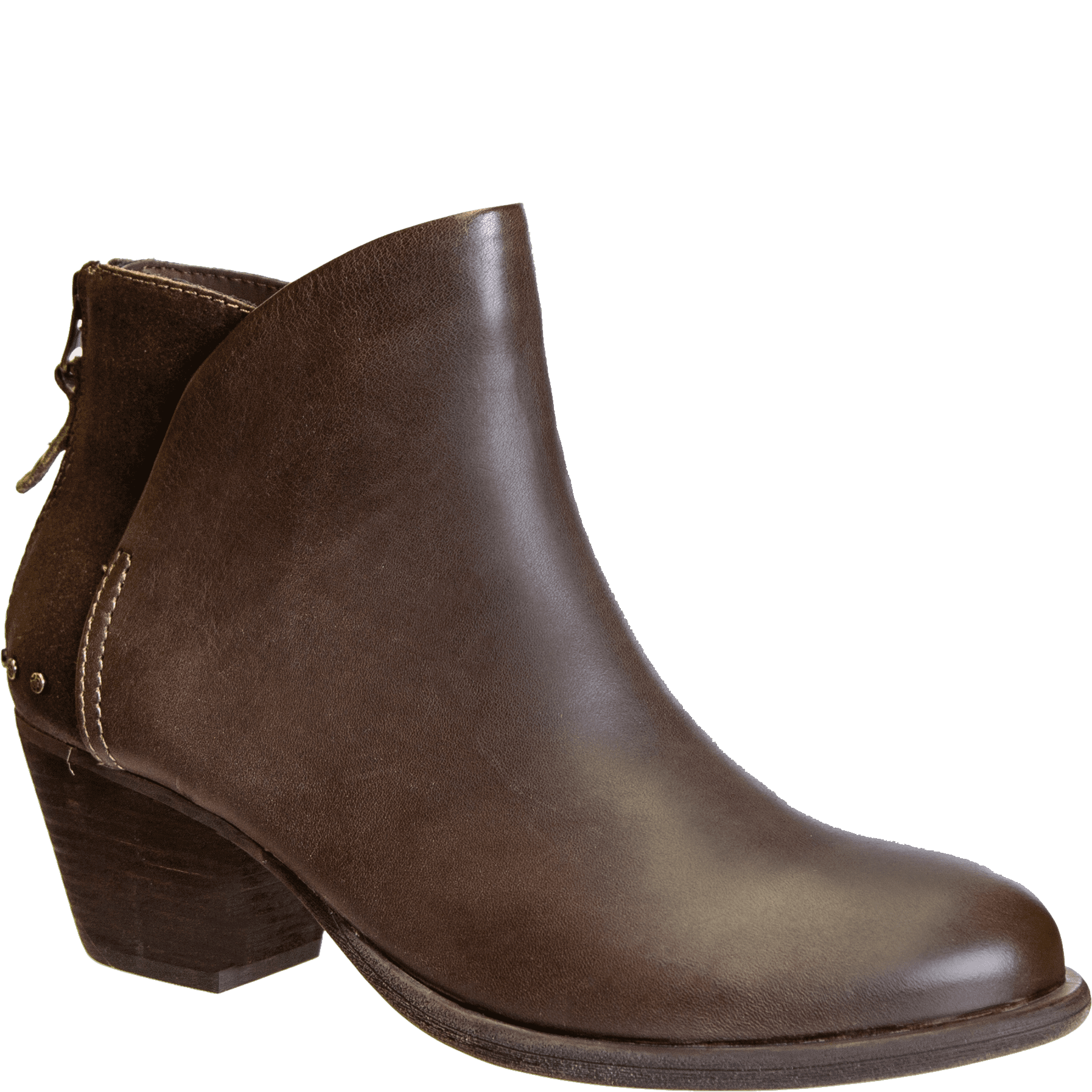 COMPASS in JAVE Ankle Boots