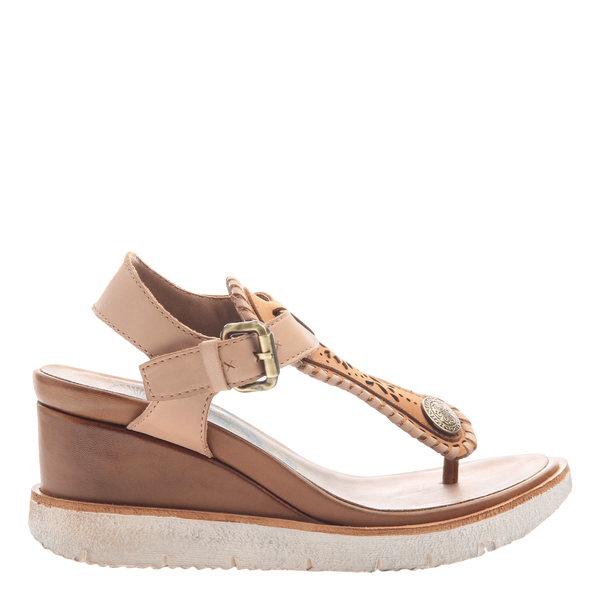 Excursion wedge in cashew